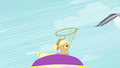 Applejack about to lasso Rainbow Dash S2E02.png