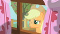 Applejack peering through window 4 S01E18.png