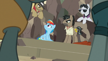 Caballeron and henchponies surround Rainbow Dash S7E18