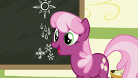 """Cheerilee """"how about show and tell?"""" S9E12"""