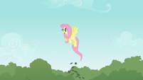 Fluttershy gaining confidence S2E22