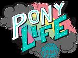 My Little Pony: Pony Life/Gallery