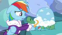 "Rainbow Dash ""I'm sure gonna miss you"" S5E5"