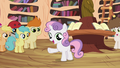 """Sweetie Belle """"we don't have Scootaloo's unicycle parts"""" S4E15.png"""