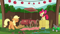 Applejack throws her hat on the ground S6E14.png