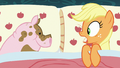 Applejack wakes up in bed with a pig S6E15.png