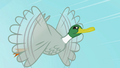 Duck flying S2E07.png