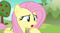 Fluttershy --that ball moves pretty fast-- S6E18