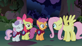 Fluttershy fake stare at Cutie Mark Crusaders S1E17.png