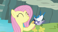Fluttershy feeding bird seed to the birds S8E4