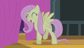 Fluttershy singing while doing a little dance S4E14.png