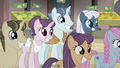 Ponies listening to Starlight S5E02.png
