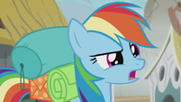 "Rainbow ""These griffons are exactly like I'd thought they'd be"" S5E8"
