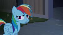 Rainbow Dash 'Tipo um fantasma' T4E03