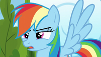 Rainbow Dash --nopony else is here-- S6E7