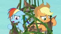 Rainbow Dash -let me guess- S8E9