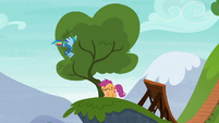 Rainbow Dash flies into another tree S6E7