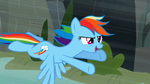 Rainbow Dash flying 3 S2E07