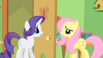 Rarity and Fluttershy S1E20