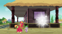 Spike and Big Mac watch Discord disappear S6E17
