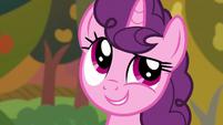 "Sugar Belle ""burnt desserts and an apple monster"" S9E23"