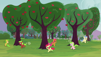 The fillies running around trees S3E08