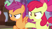 "Apple Bloom ""the one draining magic"" S8E26"