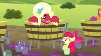 "Apple Bloom ""you almost squished ME!"" S5E17"