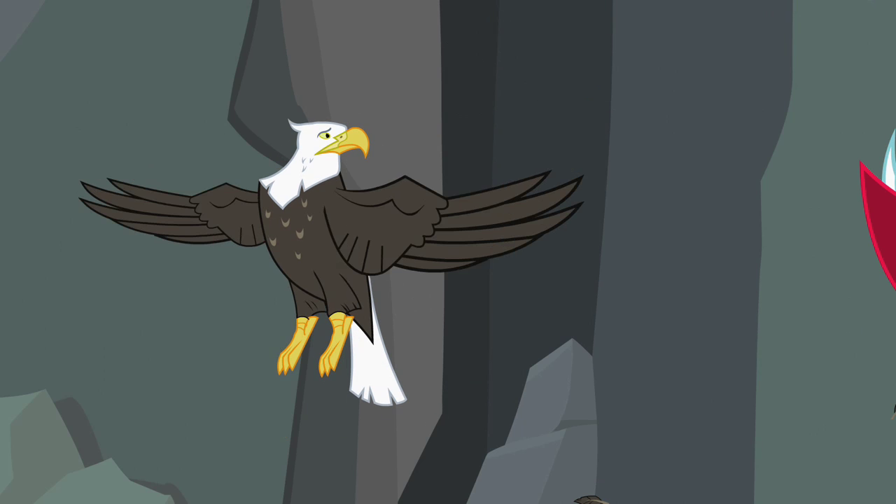 Image - Bald eagle not headless S2E7.png | My Little Pony Friendship ...
