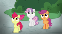 Crusaders watching Fluttershy's students S8E12
