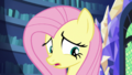 """Fluttershy """"the maze"""" S5E21.png"""