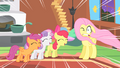 Fluttershy and the CMC S01E17.png