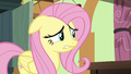 Fluttershy biting her lower lip S6E11.png