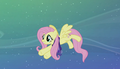 Fluttershy guiding other ponies S06E08.png