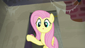 Fluttershy looks at a raccoon S6E9.png