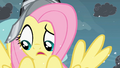 Fluttershy questioning what to do S2E11.png