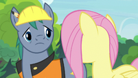 Hard Hat looking at Fluttershy S7E5