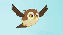 Owl flying S2E07