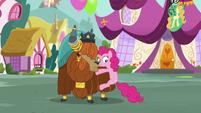 Pinkie pauses S5E11