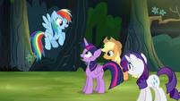 "Rainbow Dash ""I spotted the house"" S4E04"