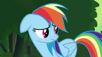 "Rainbow Dash ""you were right, Twilight"" S4E04"