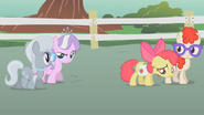 S01E12 Diamond Tiara, Silver Spoon, Apple Bloom, Twist