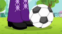 Soccer ball rolls next to Twilight's feet EG