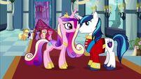 Una boda en Canterlot Segunda Parte 51