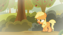 "Applejack ""where'd I put that trap?"" S9E10"