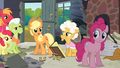 Applejack 'Well, I know for sure!' S4E09.png