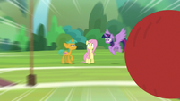 Buckball flying toward Fluttershy S9E15