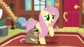 "Fluttershy ""I appreciate you sharing your thoughts"" S7E5.png"