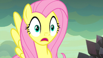 Fluttershy Right Ear Layering Over Her Top Eyelash S9E9