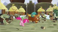 Pinkie Pie and yaks continue to stomp S7E11